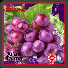 Ароматизатор Виноград (Xian) 5мл